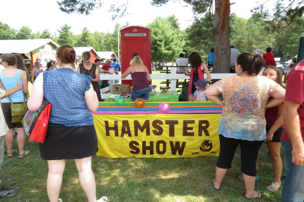 Hamster Show