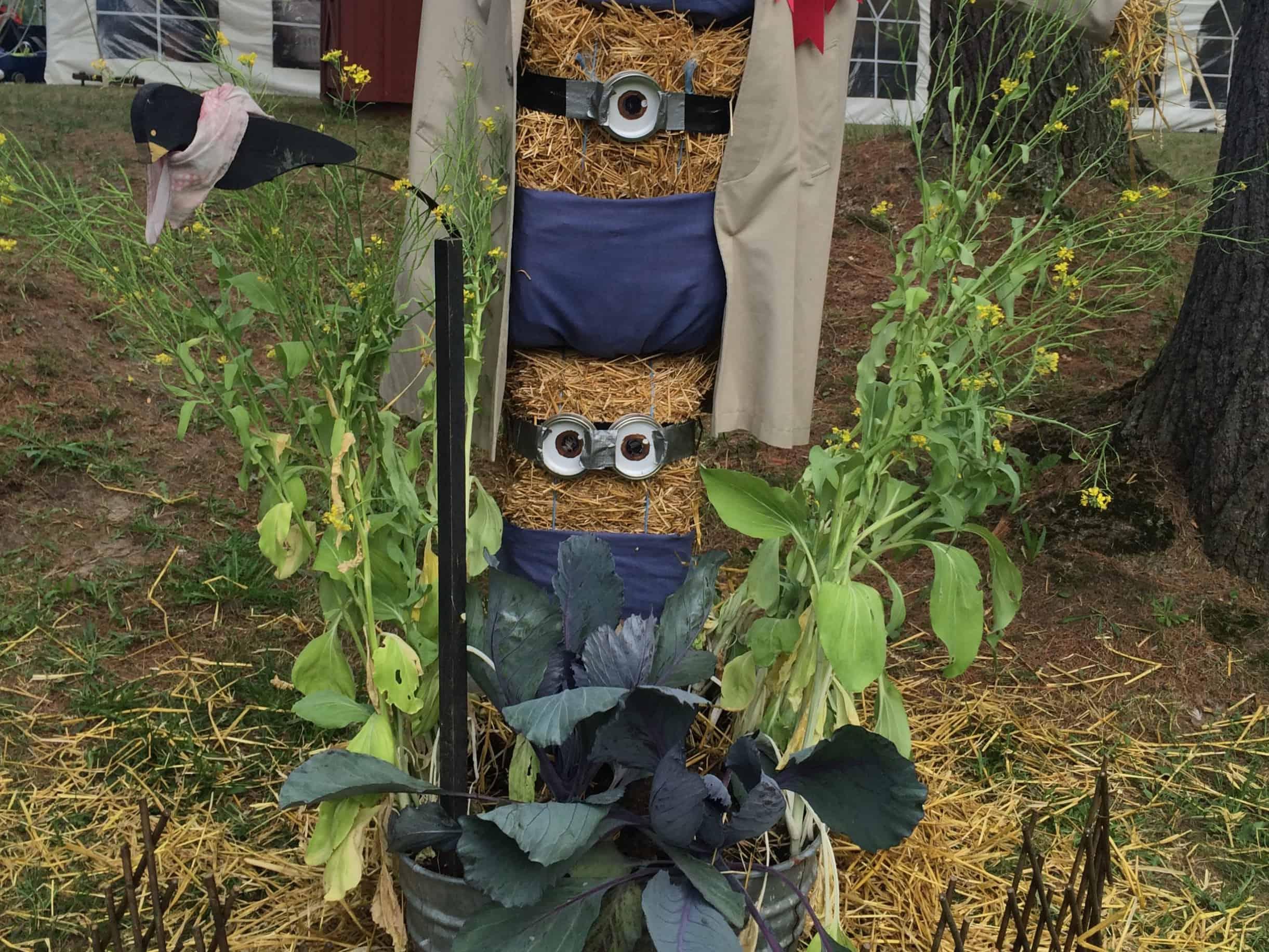 Scarecrow Compeititon